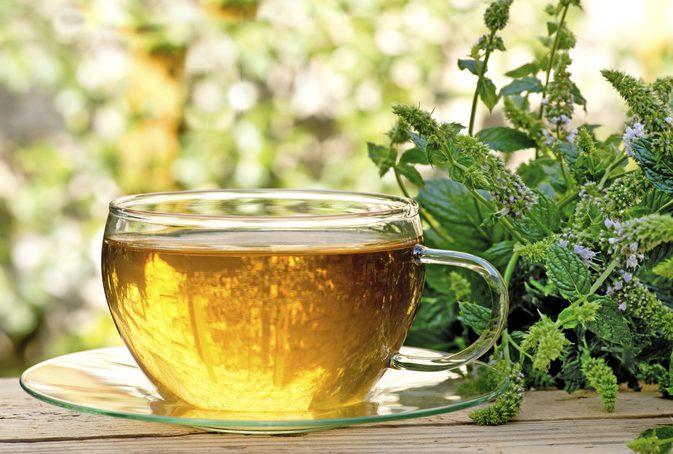 ČAJ ZA ŽELUDAC (GASTER ČAJ) - Kuća čaja Makarska, svijet čaja i ...